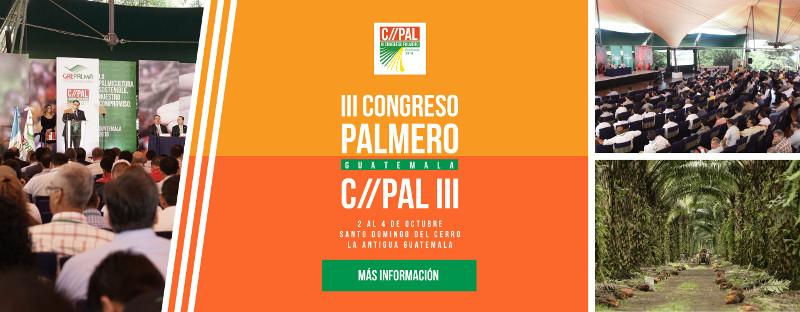 Congreso Palmero Guatemala